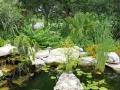 Landscape-Design-Austin